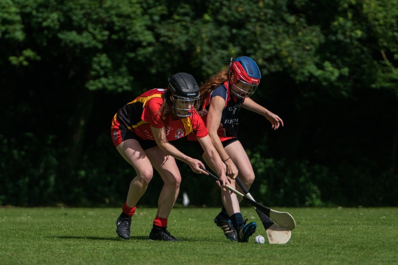 Hurling-Hamburg-gs-35.jpg