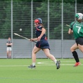 Hamburg Hurling-2