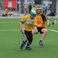 Hamburg Hurling-4